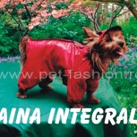 Haine - haina integrala    www.pet-fashion.ro